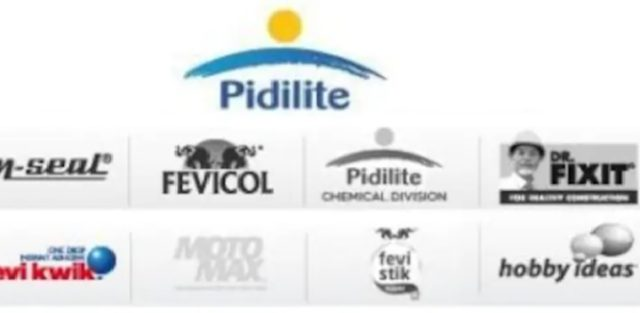 Pidilite Industries Share Falls 3 After Q4 Results
