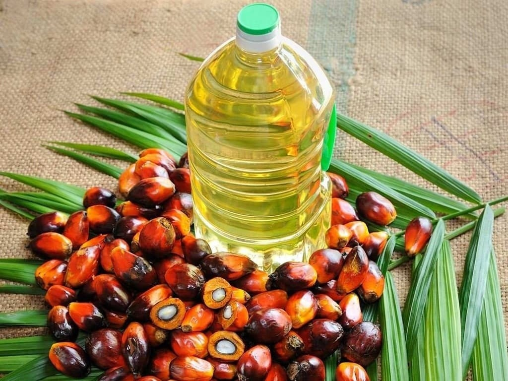 Duty cut lifts India's palm oil imports in Sept to a record 1.4 mn tonnes